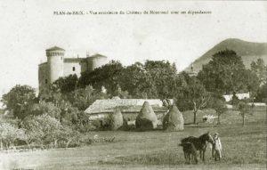 Замки Луары - Монрон