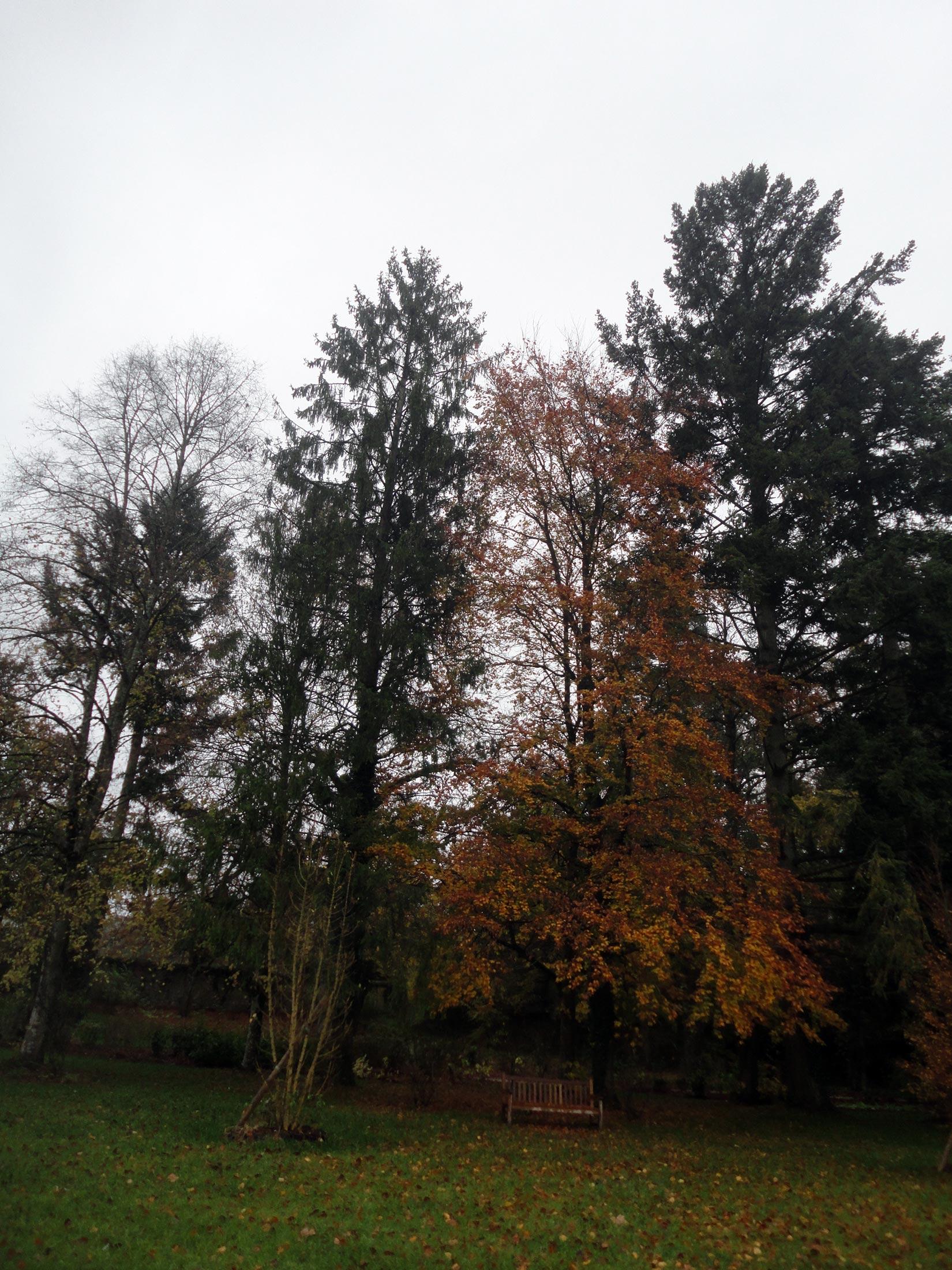тур по Луаре осенью