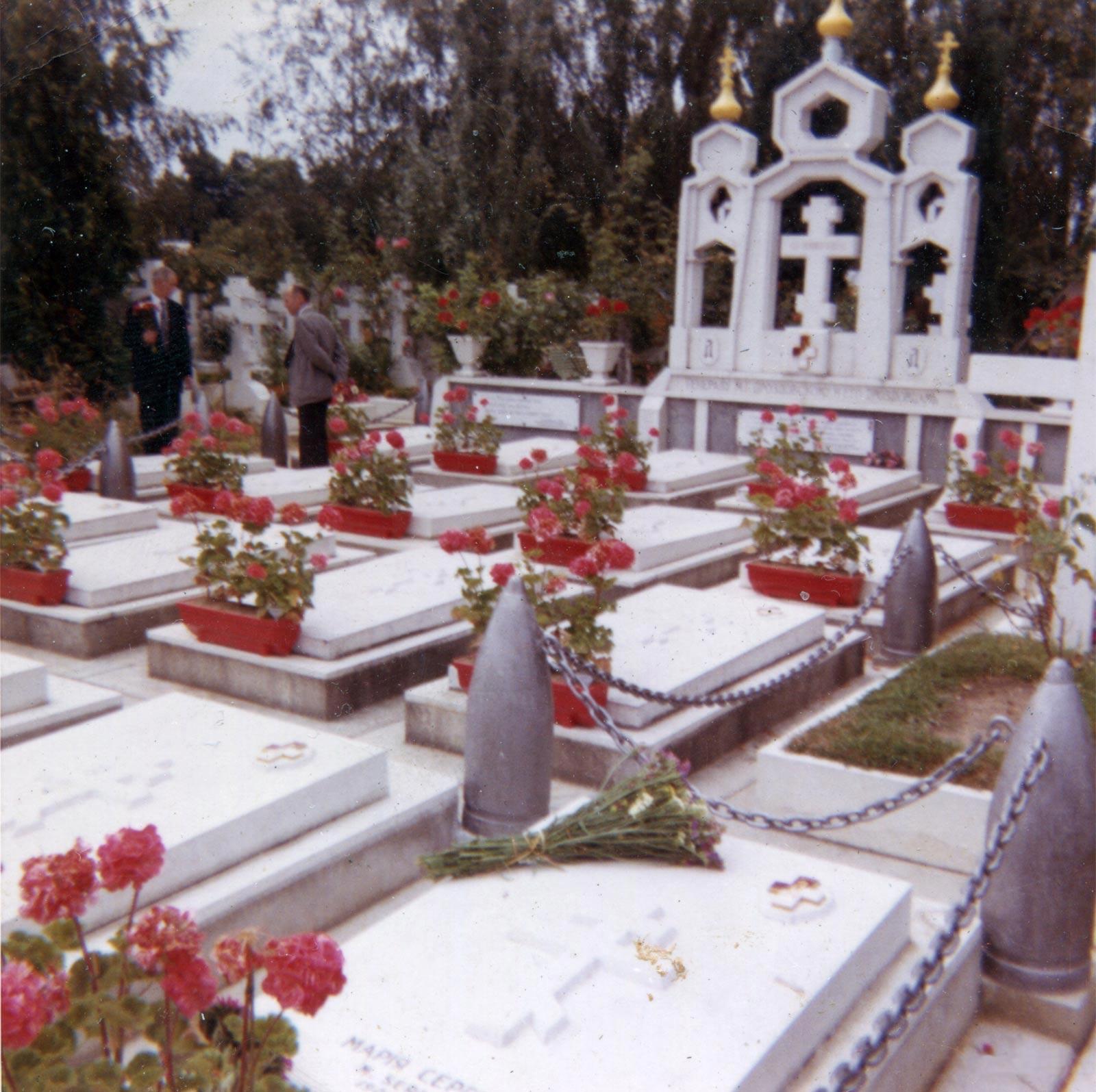редкие старые виды русского кладбища в цвете