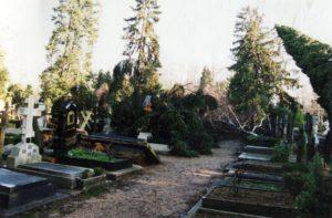 русское кладбище Сент-Женевьев-де-Буа после урагана
