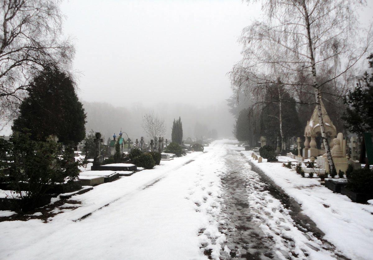 редкий снежный покров русского кладбища Сен-Женевьев-де-Буа