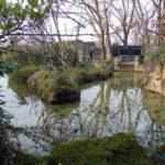 водоемы в зоопарке