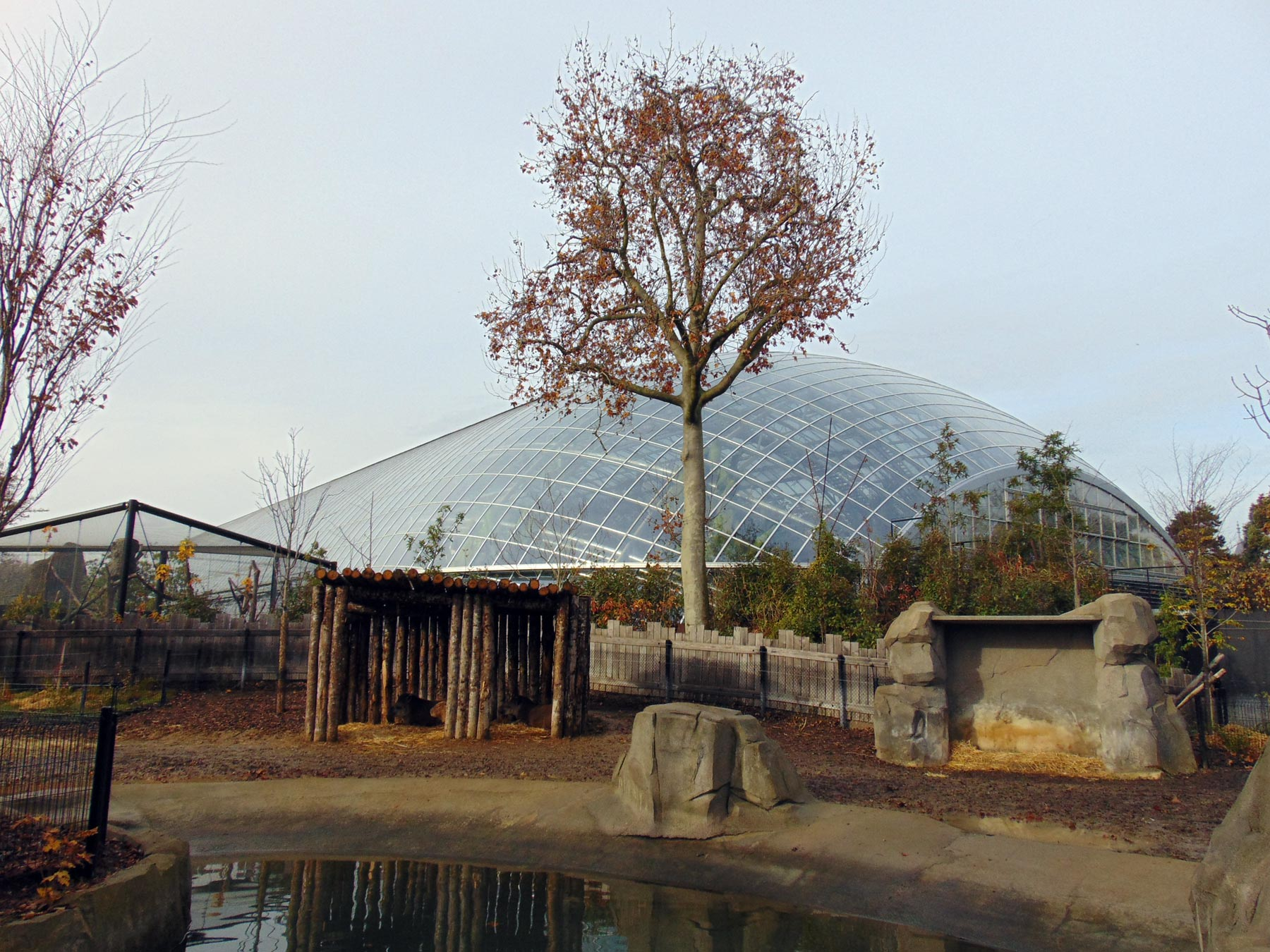 павильон в парижском зоопарке