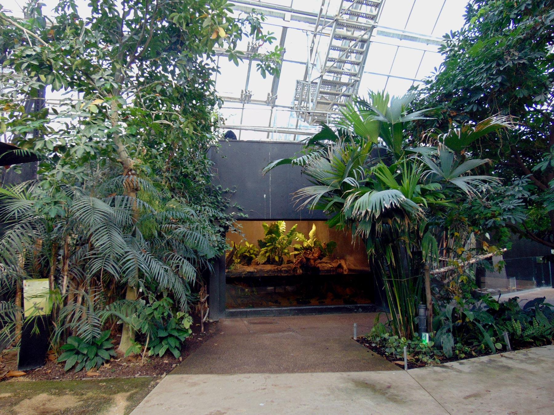 внутри павильона парижского зоопарка