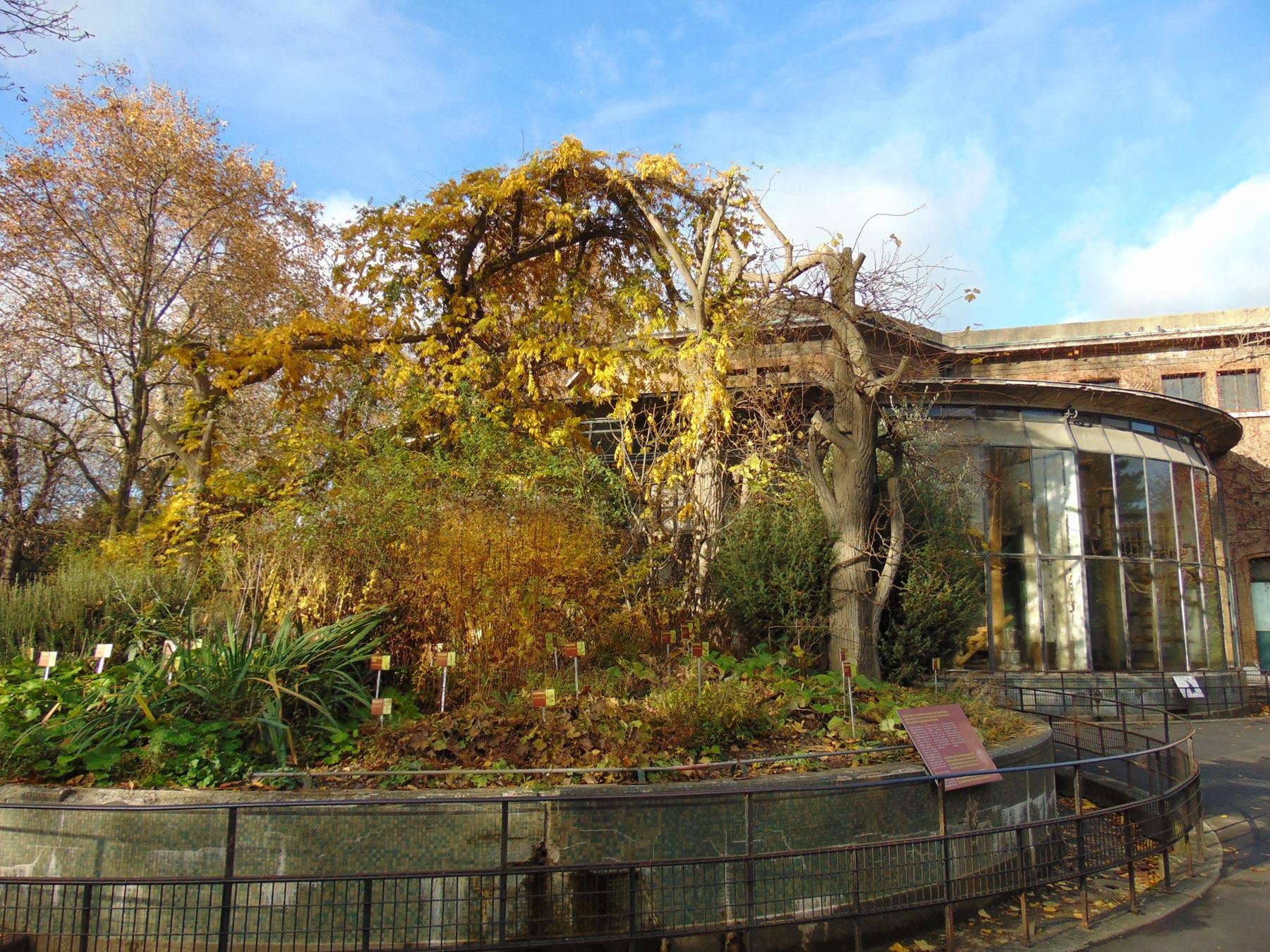 вивариум парижского зоопарка