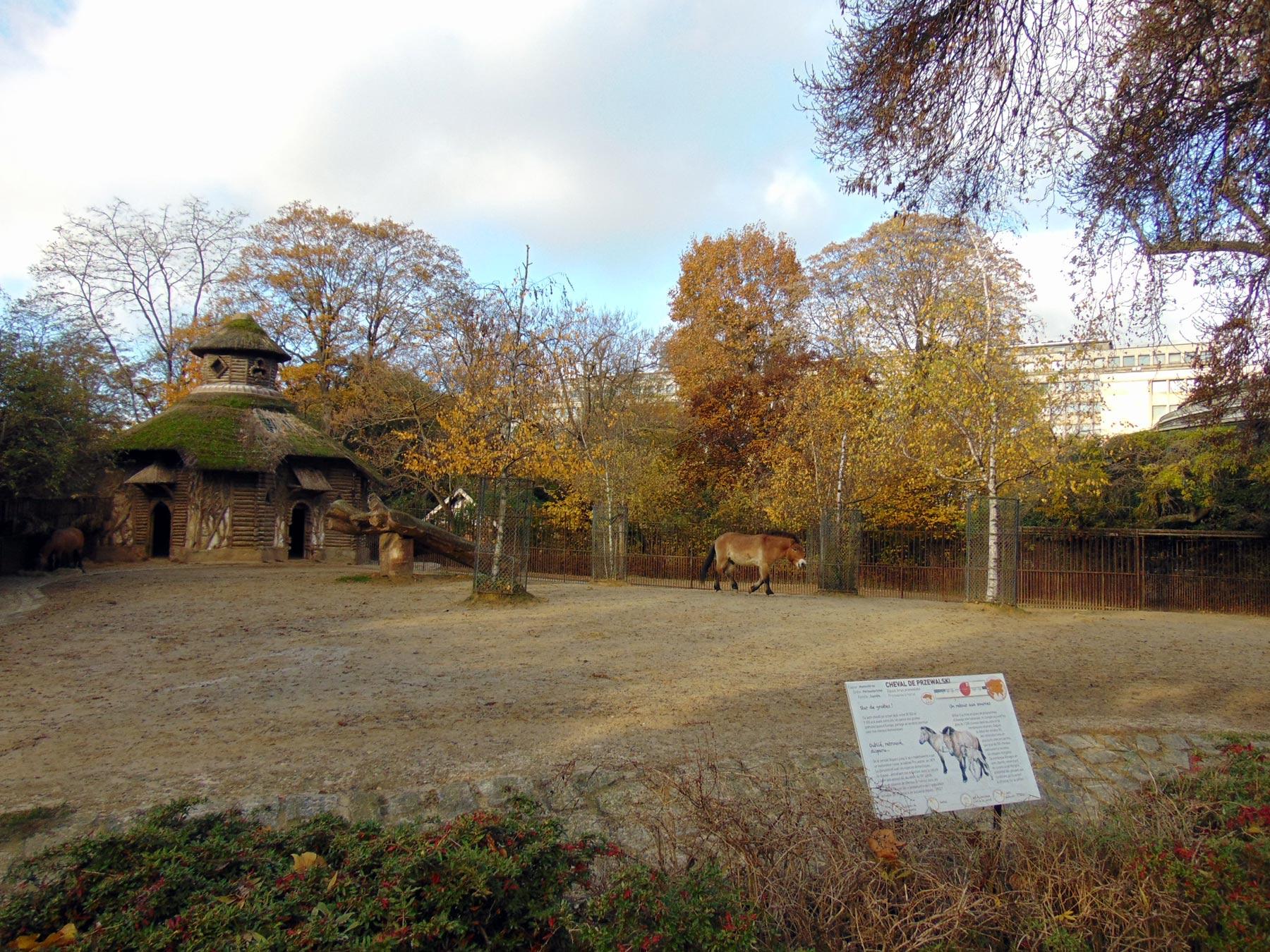 зоопарк при Ботаническом саде в Париже осенью