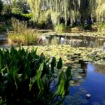 водная экскурсия по Живерни