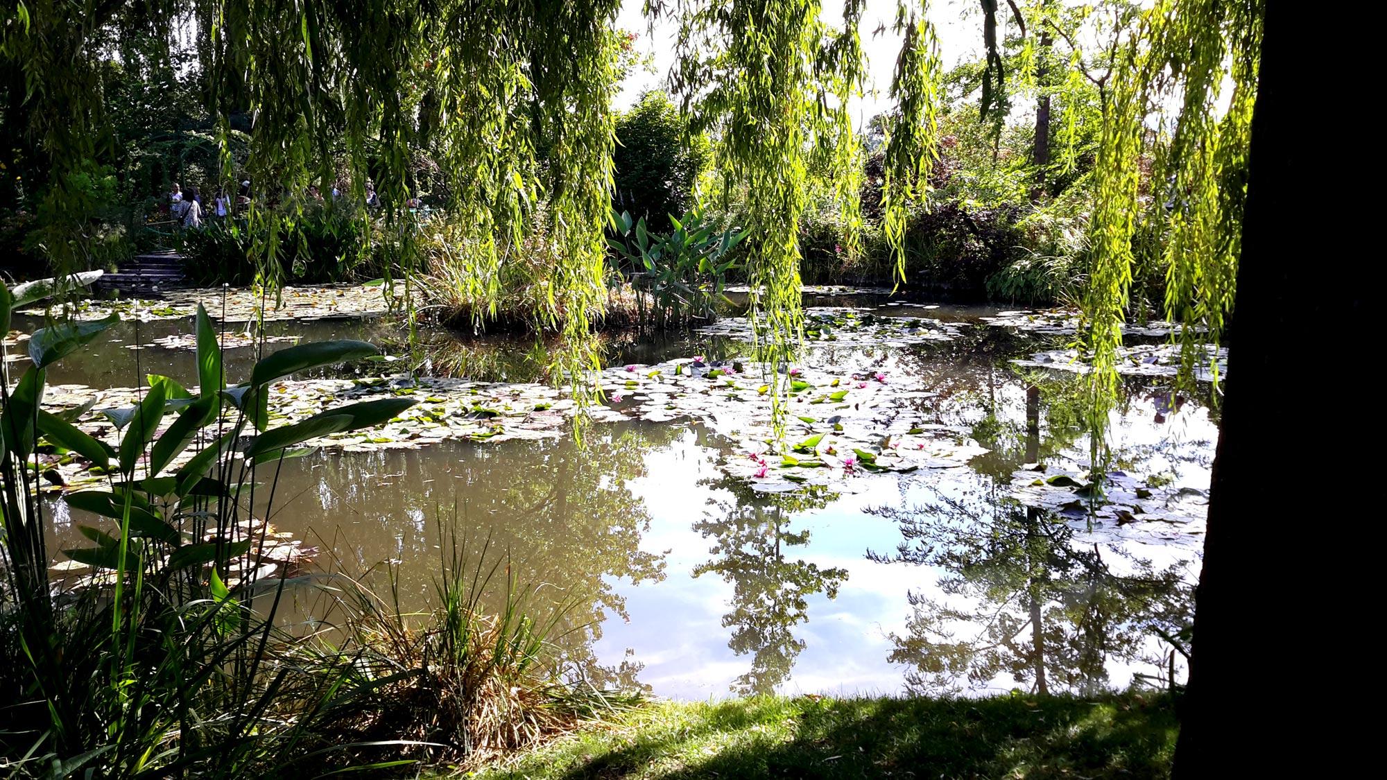 отражение воды сада Клода Моне